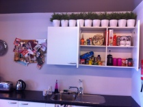 Suzie's beautifully clean cupboards!