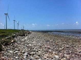 Windmills Facing Seawards