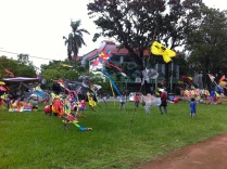 Colourful Kites.