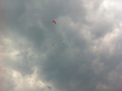 Kites in the grey sky.